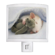 cute mouse and teddy bear nap together night light