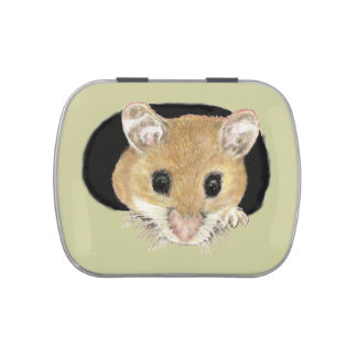Cute Mouse Peeking out of hole in Candy Jar Humour Jelly Belly Candy Tins
