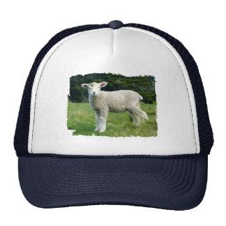 Cute Muddy Lamb in Meadow Ragged Edge Design Trucker Hat