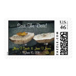 Cute Mushroom Save The Date Wedding Postage Stamp