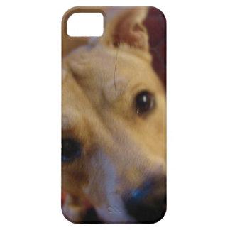 Cute Mutt Soft Blur iPhone SE/5/5s Case