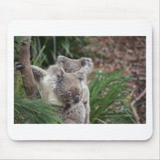 Cute Nature Jungle Tree Safari Koala Animals Bear Mousepads