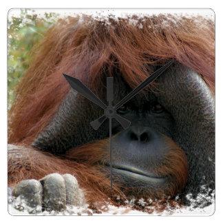 Cute Nature Orangutan Great Apes Wall Clock