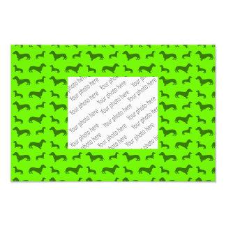 Cute neon green dachshund pattern art photo