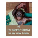 Cute New Home Change of Address Postcard