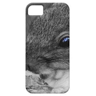 Cute New York City Squirrel iPhone 5 Cases