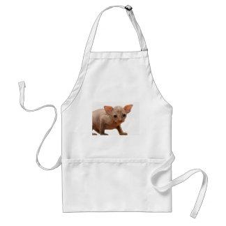 Cute newborn sphynx kitten adult apron