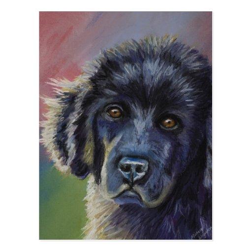 Cute Newfoundland Puppy Dog Art - Postcard