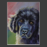 Cute Newfoundland Puppy Dog Art - Postcards