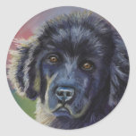 Cute Newfoundland Puppy Dog Art - Round Stickers