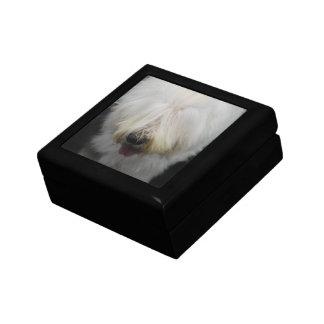 Cute Old English Sheepdog Gift Box