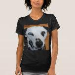Cute One Blue Eye Dalmatian Dog Tshirt
