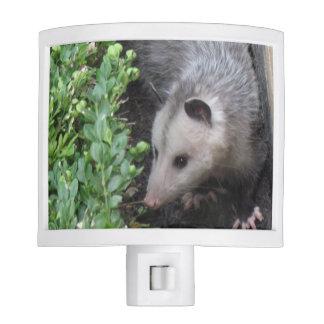 Cute Opossum Night Light