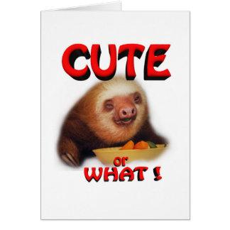 cute or what card