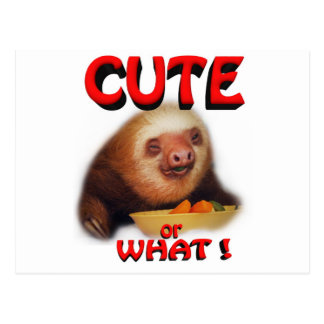 cute or what postcard