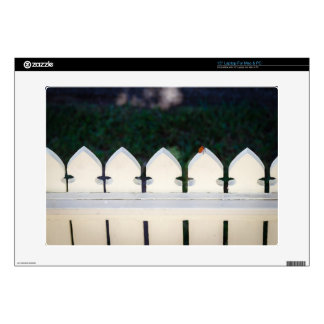 Cute Orange Beetle on Picket Fence Decals For Laptops