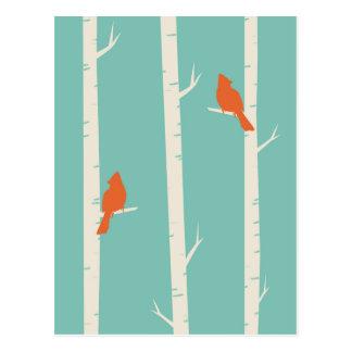 Cute Orange Birds Perched on Birch Trees Postcard