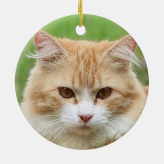 Cute orange cat christmas tree ornament