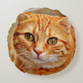 Cute Orange Cat Round Pillow