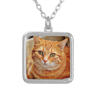 Cute Orange Cat Silver Plated Necklace