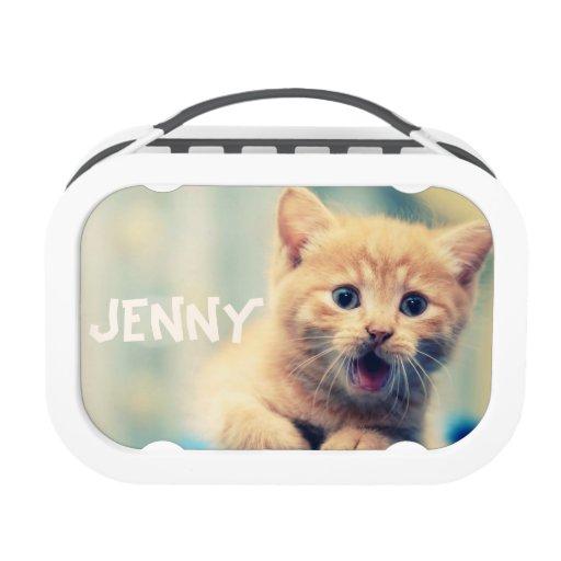 cute orange kitten cat lunch box school