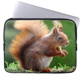 Cute orange squirrel laptop sleeve