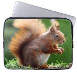 Cute orange squirrel laptop sleeves