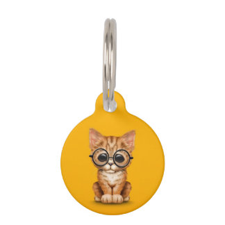 Cute Orange Tabby Kitten with Eye Glasses yellow Pet Tags