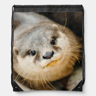 Cute Otter, Animal Portrait, Nature Photography Drawstring Bag