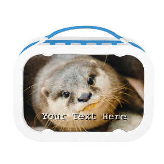 Cute Otter, Animal Portrait, Nature Photography Lunch Box