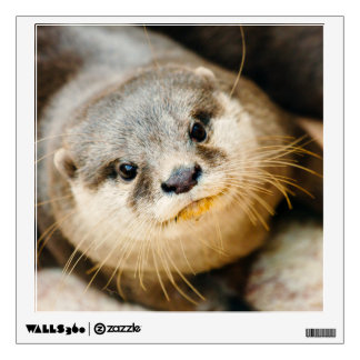 Cute Otter, Animal Portrait, Nature Photography Wall Decal