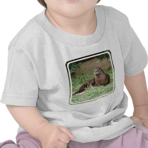 Cute Otter Baby T-Shirt