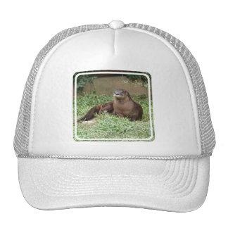 Cute Otter Baseball Hat