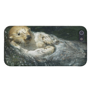 Cute Otter Design for Animal-lovers Case For iPhone SE/5/5s