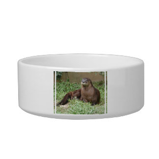 Cute Otter  Pet Bowl