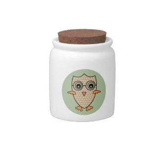 Cute Owl Bird. Vintage Retro Mint Green Background Candy Jars