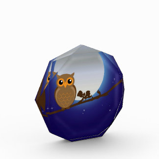Cute Owl By The Moonlight Award