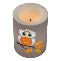 Cute Owl Candle