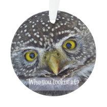 Cute Owl Face Ornament