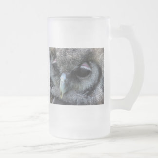Cute Owl Glass Frosted Glass Beer Mug
