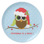 Cute Owl in Santa Hat Christmas Plates