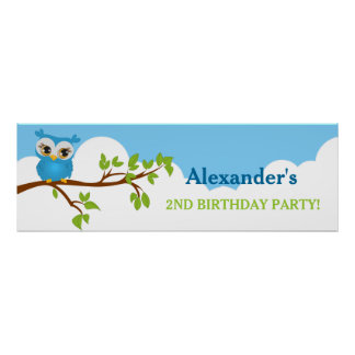 Cute Owl on Branch Boy Birthday Party Banner Poster