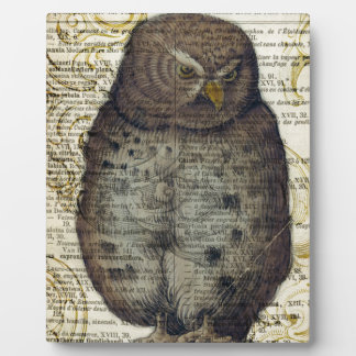 Cute Owl Plaque