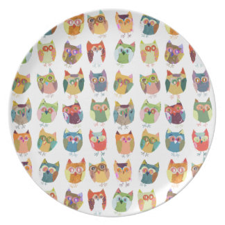 Cute Owl plate, birthday  plate, party tray, party Dinner Plate