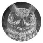 Cute Owl Statue Plate
