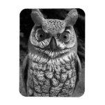Cute Owl Statue Rectangular Photo Magnet