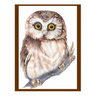Cute Owl - Watercolor Bird Collection Postcard