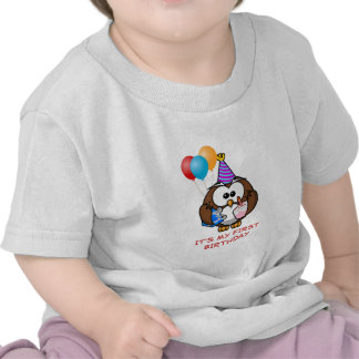 Cute Owl with Balloons and Cake It's My Birthday Shirts
