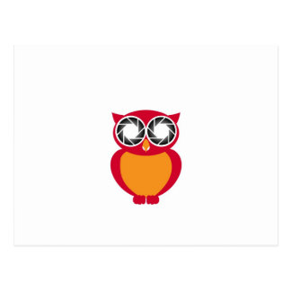 Cute Owl with Photography aperture eyes Postcard