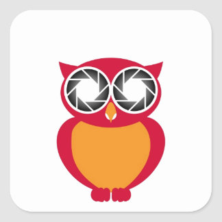 Cute Owl with Photography aperture eyes Square Sticker